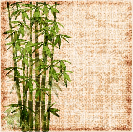 shabby bamboo background Vector