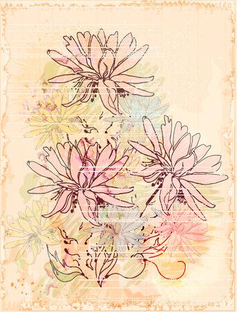 lilia: vintage sketch