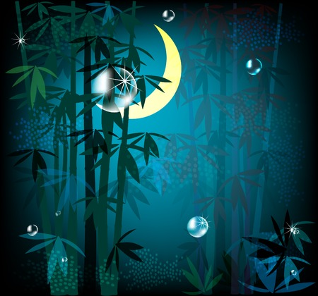 night rainforest Vector