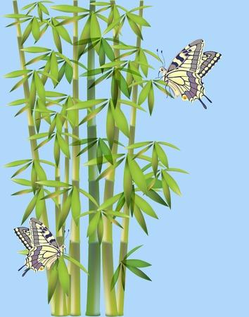 wet flies: batterflies  and bamboo
