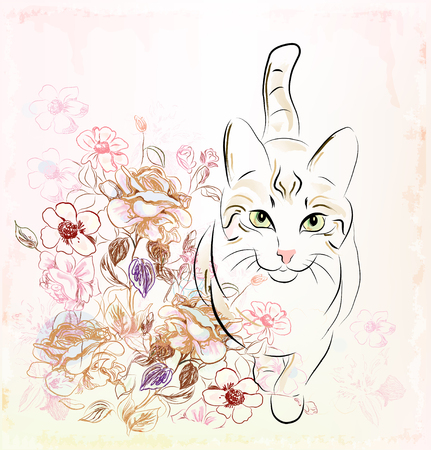 flowers cat:  cat and roses Illustration