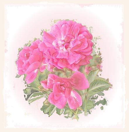 flores vintage: Vintage greeting card with roses