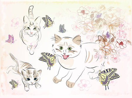 cats  playing with butterfy butterflies Vector