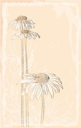 Gerbera stile vintage bouquet
