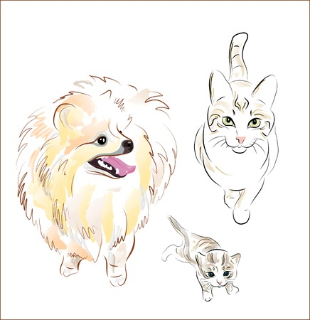 dog and cats Vector