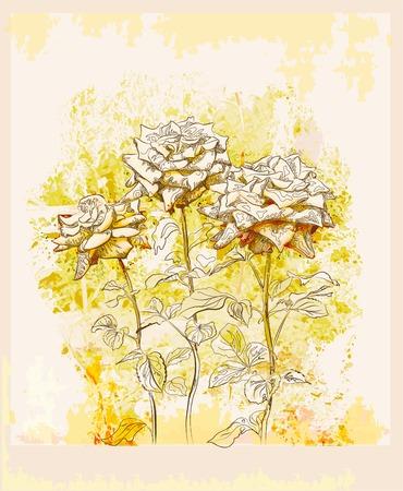 Vintage di auguri con le rose  Vettoriali