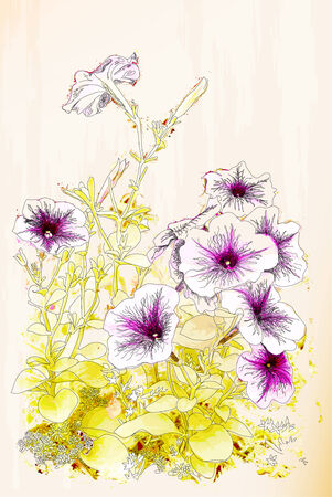 Petunias flowers. Chinese style Vector