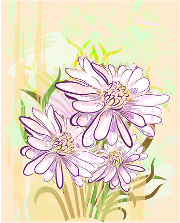 grange floral background with herberas Illustration