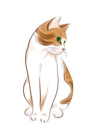 hand drawn portrait of  ginger tabby cat Stock Vector - 8376608