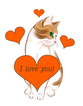 valentine passion: valentines day greeting card with tabby cat and heart
