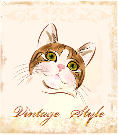 vintage portrait of  ginger tabby cat Vector