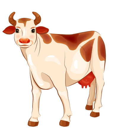 dairy cattle: happy  ginger cow  Illustration