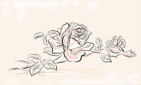 róża: archiwalne karta z pozdrowieniami z rose Ilustracja
