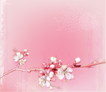 peach tree: japanese cherry blossoms in full bloom  Illustration