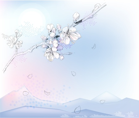 japanese apricot: cherry blossoms in full bloom Illustration