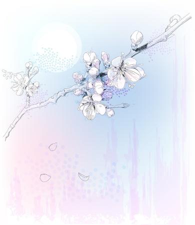 sakuras: cerezo en flor lleno Vectores