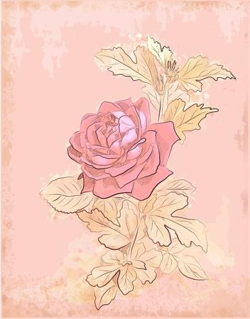 vintage red rose Vector