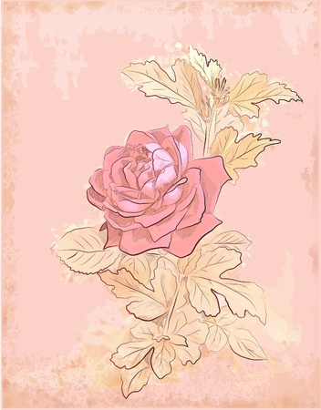 vintage red rose Ilustrace