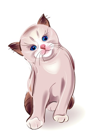 hand drawn portrait of blue-eyed  little kitten. Thai kitten sitting in front. Watercolor style. Stock Vector - 9444118