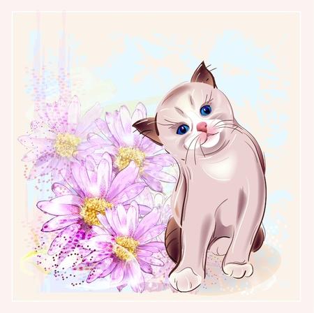 pussycat: birthday card with thai kitten and gerberas