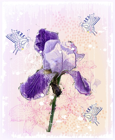 purple iris: grunge Illustration of  iris flower
