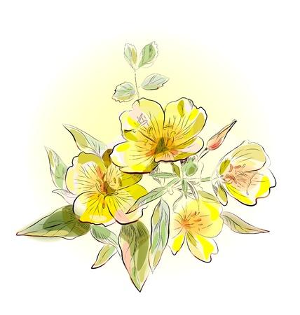 黄色のフィールドの花