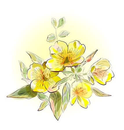 geel veld bloemen Stock Illustratie
