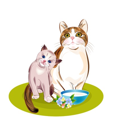 Cats family. Cat and kitten are going to eat. Vector