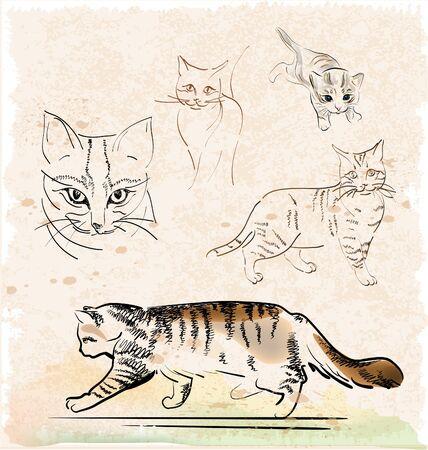 vintage set of outline cats Vector