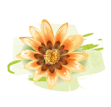 yellow flower with dew drops Vector