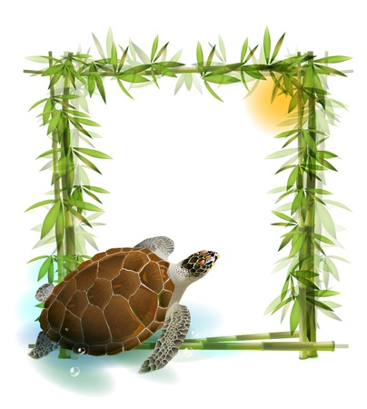 aquatic reptile: tropical  background with bamboo, sun and sea turtle.