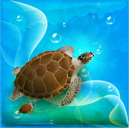 海で泳いでいるカメ家族  イラスト・ベクター素材