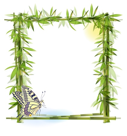 bamboo border: tropical  background with bamboo, sun and butterfly