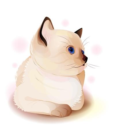 siamese: Portr�t von blau�ugigen kleinen siamesischen Katze. Aquarell-Stil.