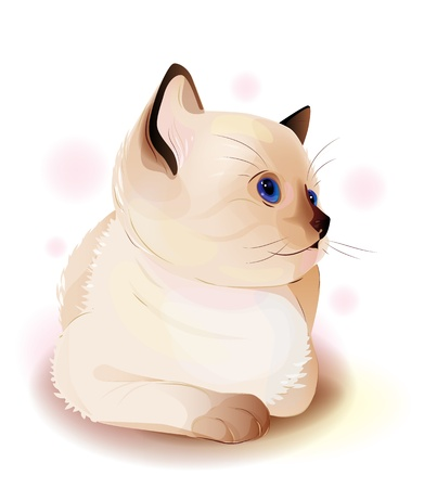 portrait of blue-eyed  little Siamese  kitten. Watercolor style. Vector