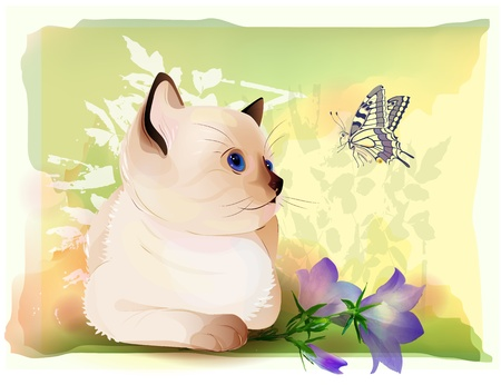 retro birthday greeting  card with thai kitten watching at butterfly . Watercolor style. Vector