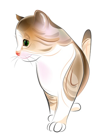 hand drawn  portrait of  ginger tabby kitten. Watercolor  style Vector