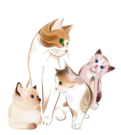 happy cats family. Cat and  kittens. Ilustrace