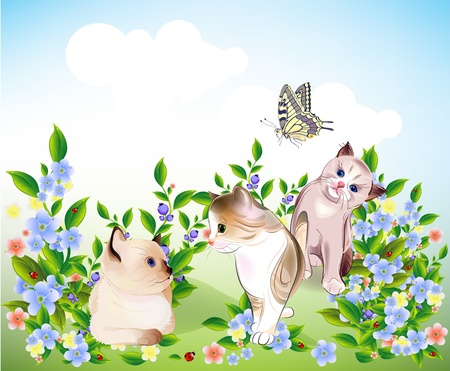 meadows: happy  little kittens and butterfly play on the meadow