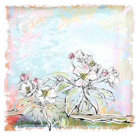 sketch of apple tree in bloom  イラスト・ベクター素材