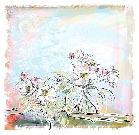 disegno di melo in fiore