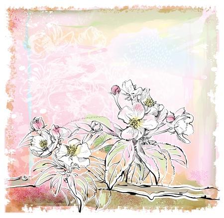 sketch of apple tree in bloom Illustration
