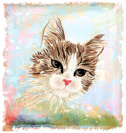 hand drawn portrait of the fluffy cat Vector