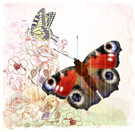 Butterflies and roses Vector