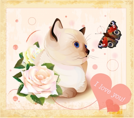 Valentines day greeting card with kitten, butterfly and roses Stock Vector - 14301584