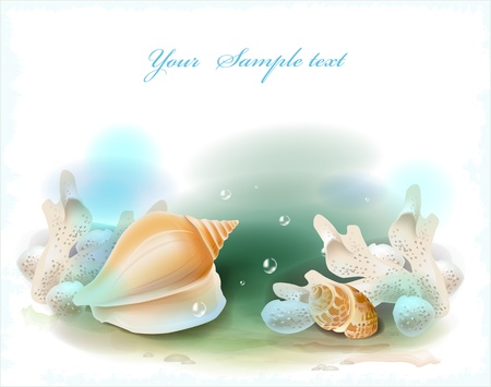 seabed: background with seashells and corals Illustration