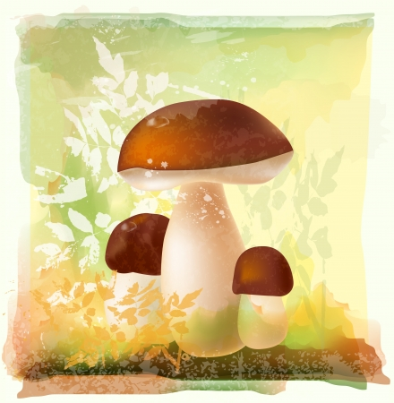 mycology: group ceps of  in the forest. Watercolor style.