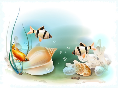 ichthyology: illustration of the tropical underwater world Illustration