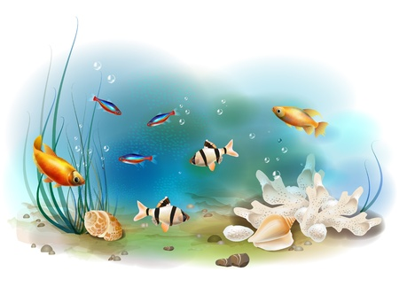 plant life: illustration of the tropical underwater world Illustration