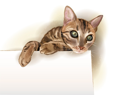 hand drawn illustration of  the cat with banner. Watercolor style. Illustration